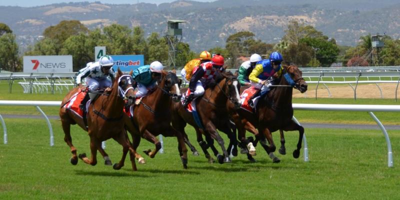 Žirgų lenktynės - lažybos internetu nemokamai